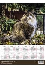 3D календар - Котка 2017
